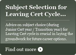 Selecting Subjects for Leaving Cert cycle